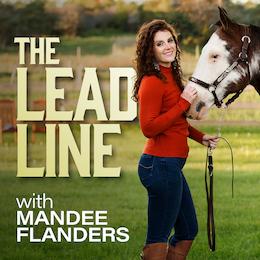 the-leadline-diy-website