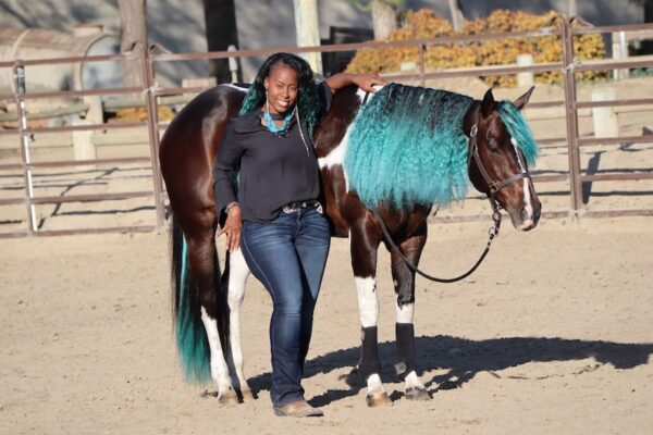 Hair Extensions for Horses
